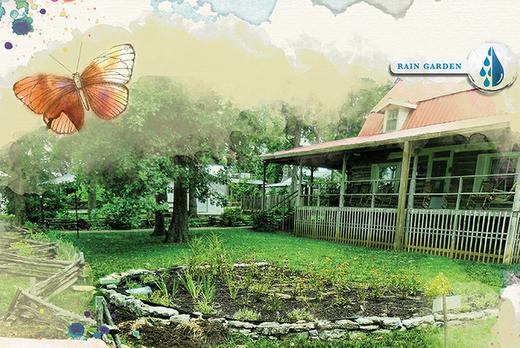 How to Create a Rain Garden